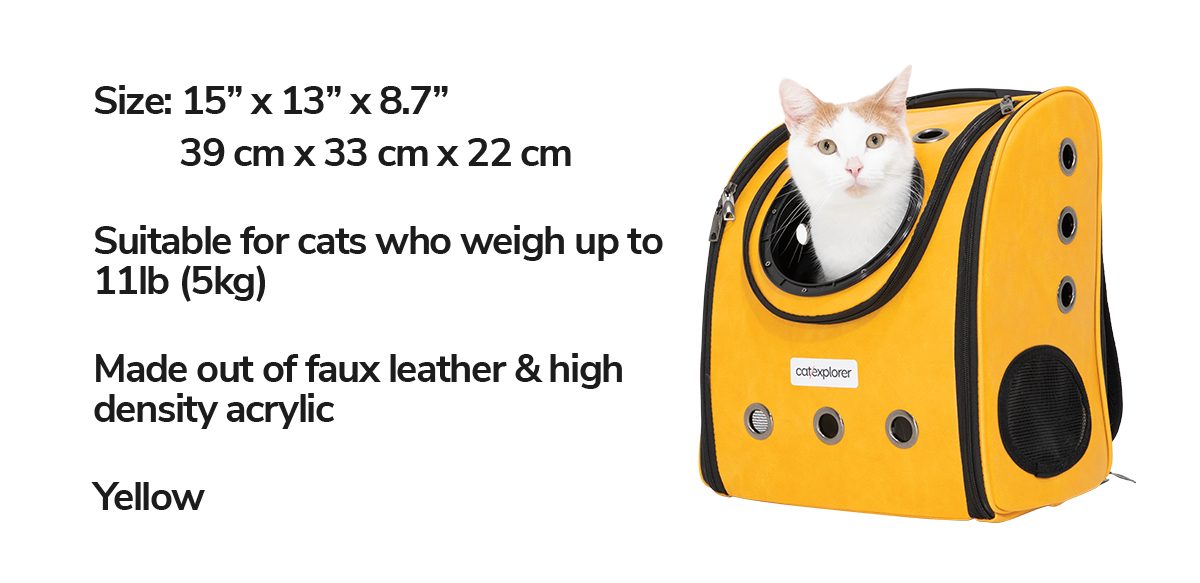 cat-backpack-pioneer-explorer.png