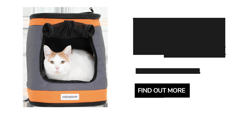 Ranger-cat-Backpack-carrier.png