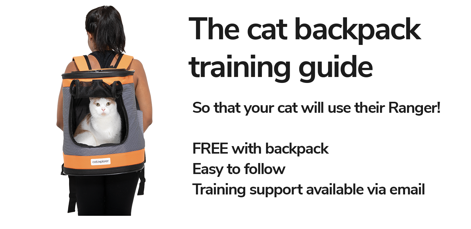 how-to-use-cat-backpack.png