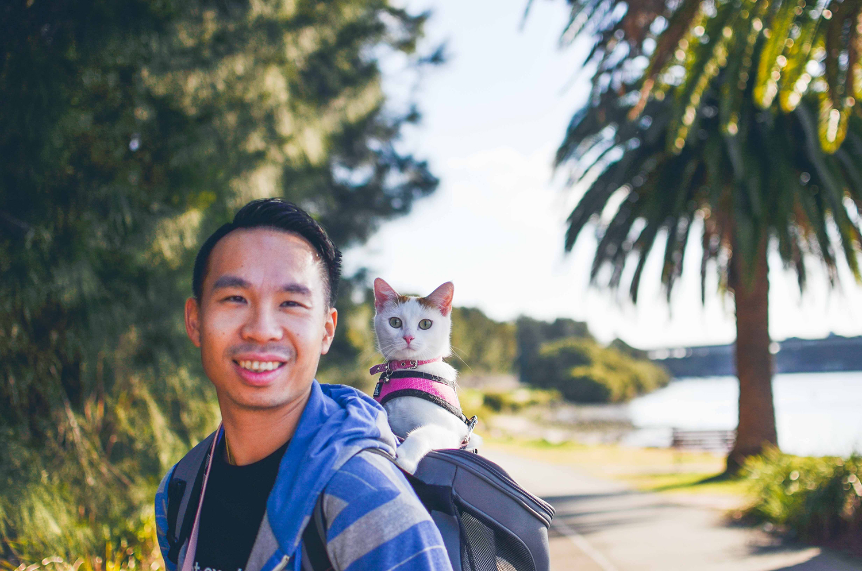 cat-in-backpack-cat-dad