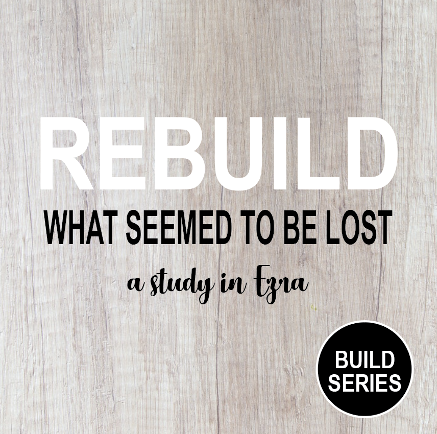 Rebuild - A Series In Erza