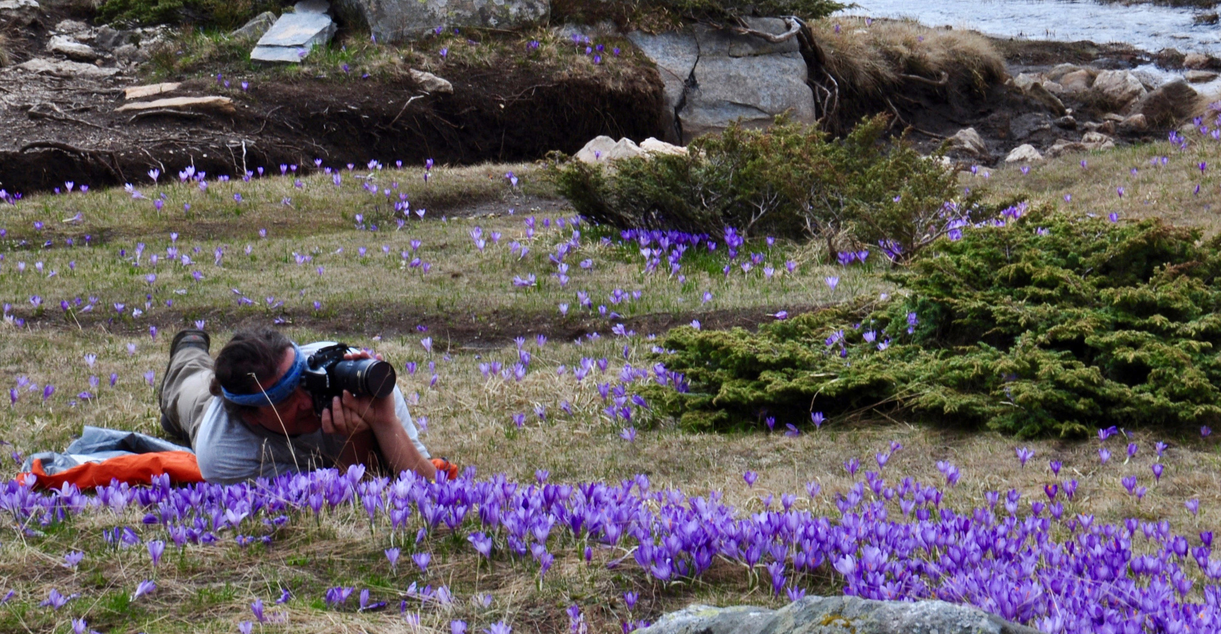 Crocus Mini Tour17 May - 20 May (3 nights)800 euromini expedition -