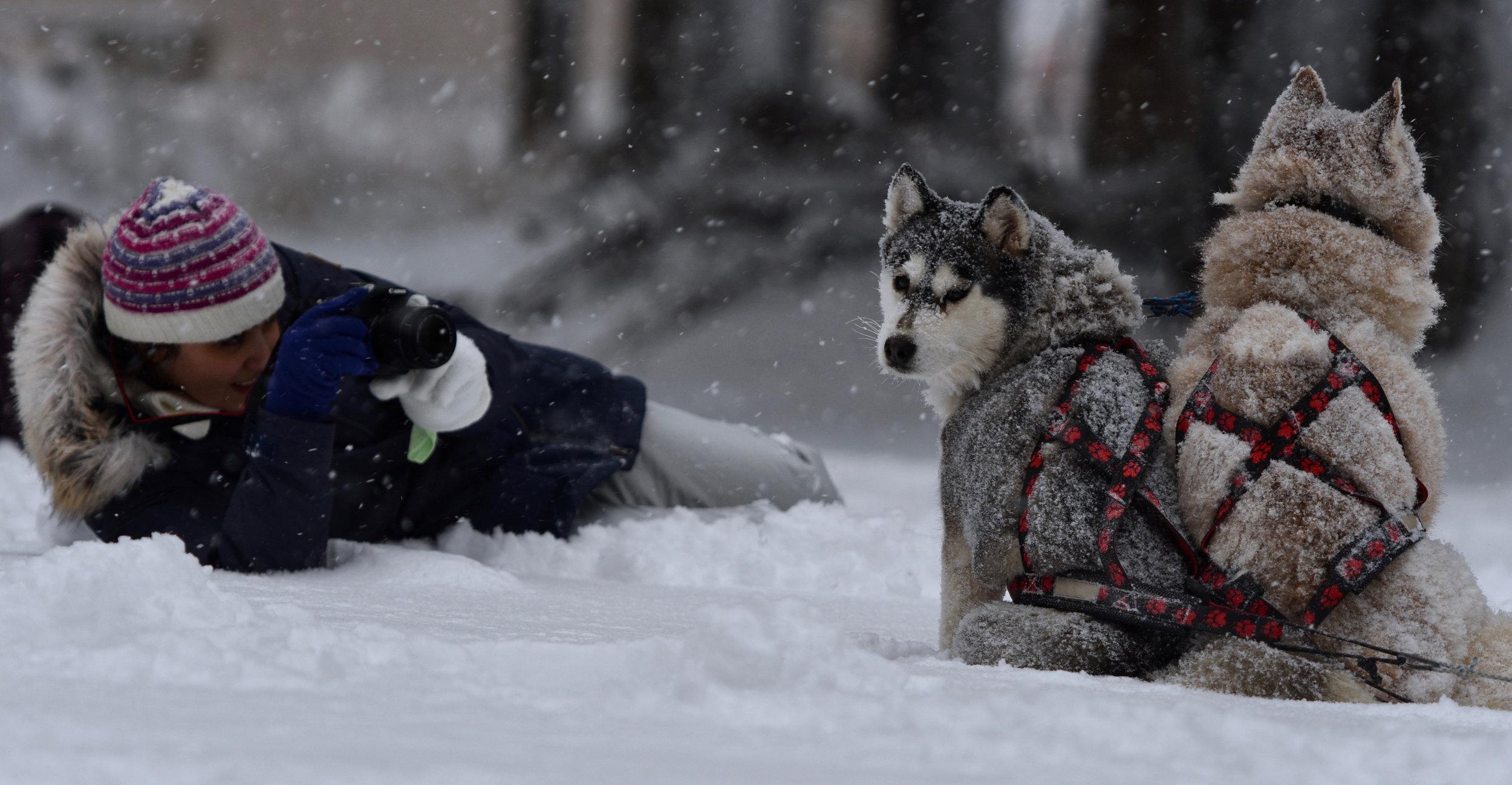 Winter Tour19 January - 26 January (7 nights)2100 euroexpedition -