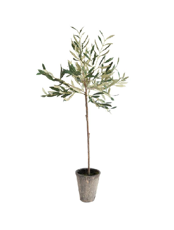 FauxOliveTree.png