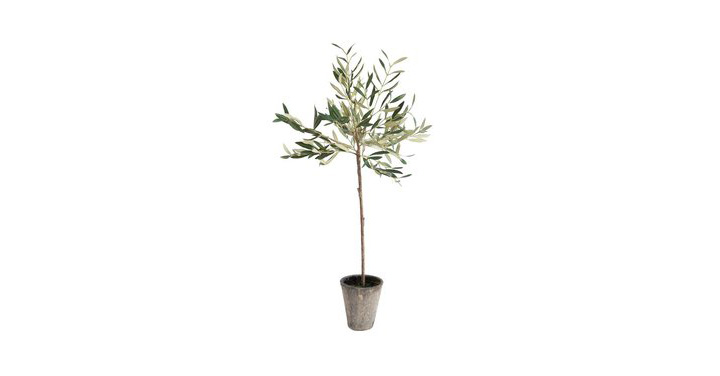 Faux_Potted_Olive_Tree_1_960x960.jpg