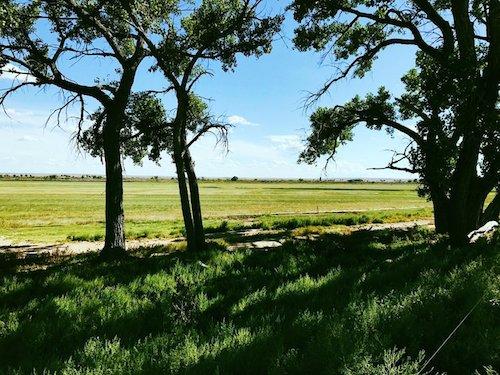 Ranchland31.jpg