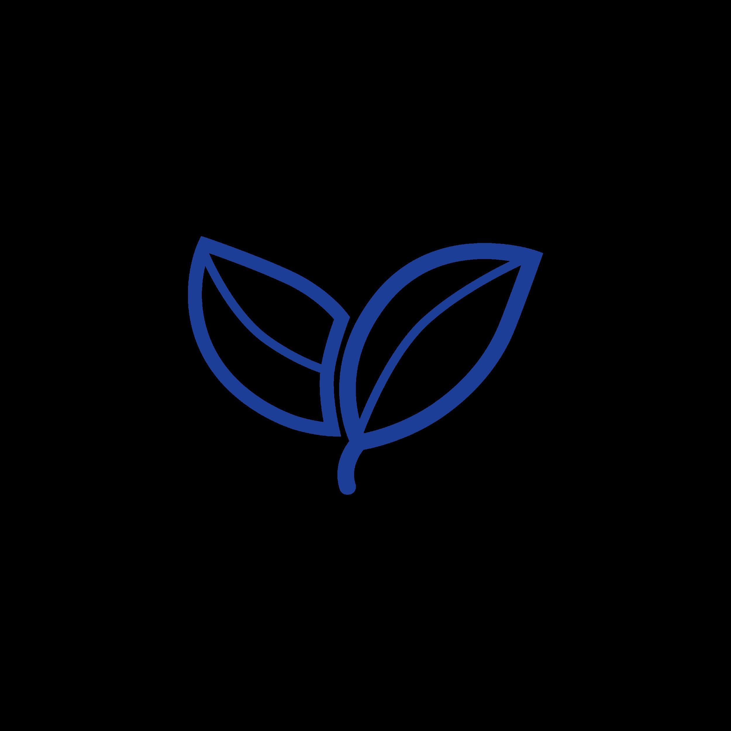 Leaf-01 (1).png