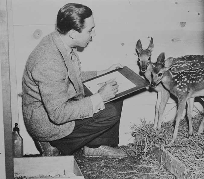Walt Disney is seen sketching live deer.