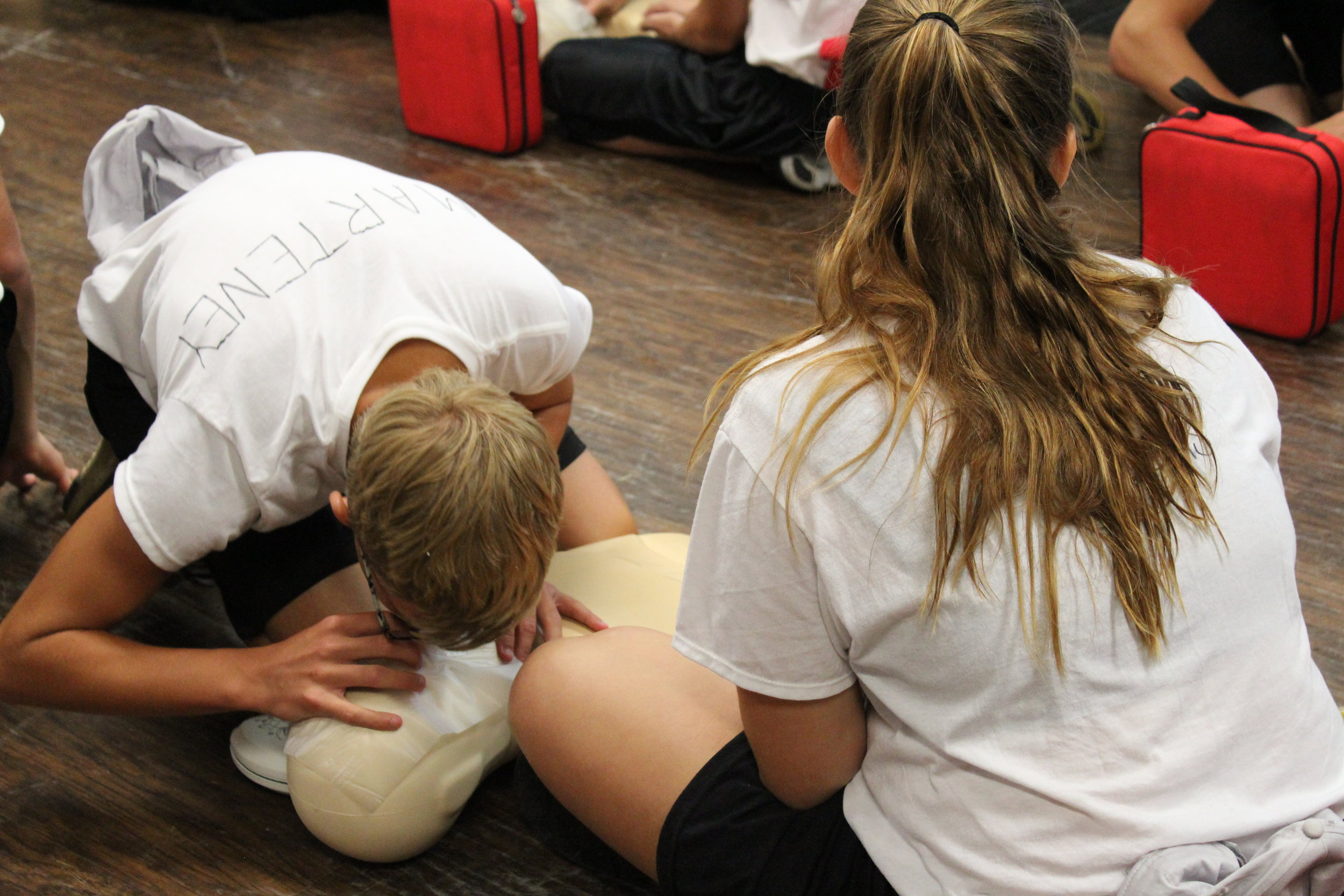 CPR2.JPG