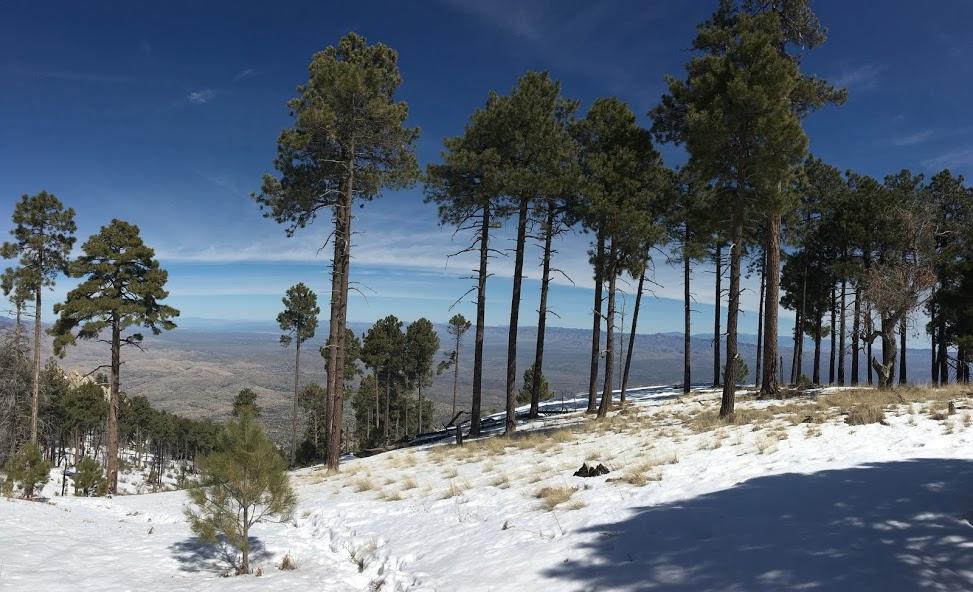 I love the Contrast between summit and desert floor