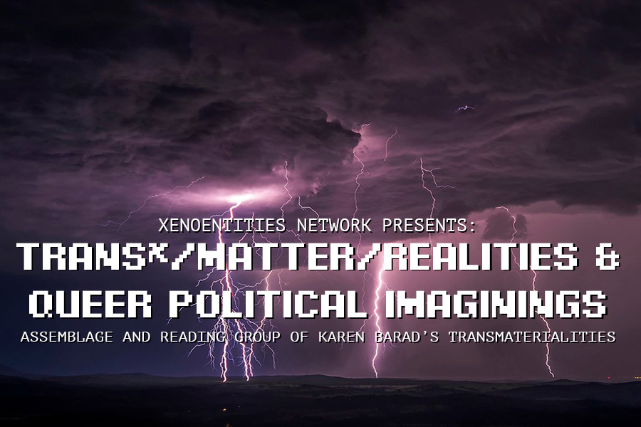 Trans*/Matter/Realities and Queer Political Imaginings