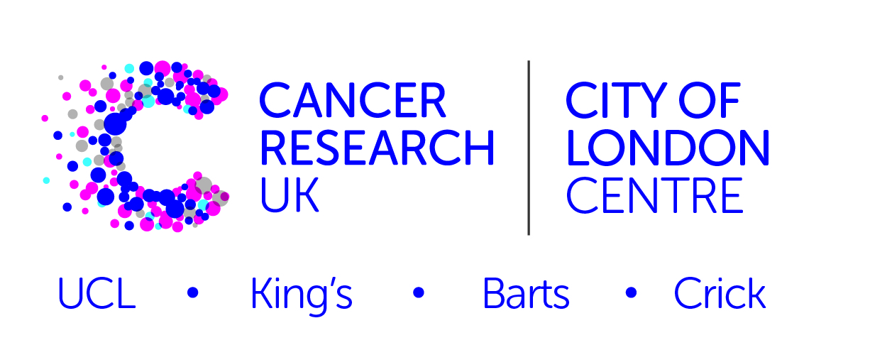 City of London Centre LOGO for Partners page.jpg