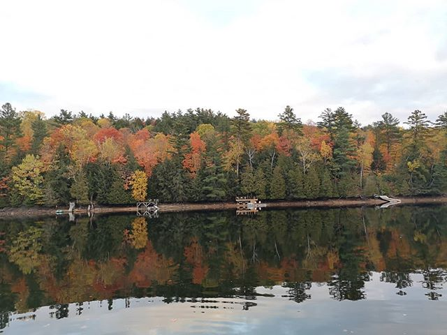 We hope everyone had a wonderful, relaxing Thanksgiving #longweekend and got the chance to see the beautiful changing colours of the leaves.