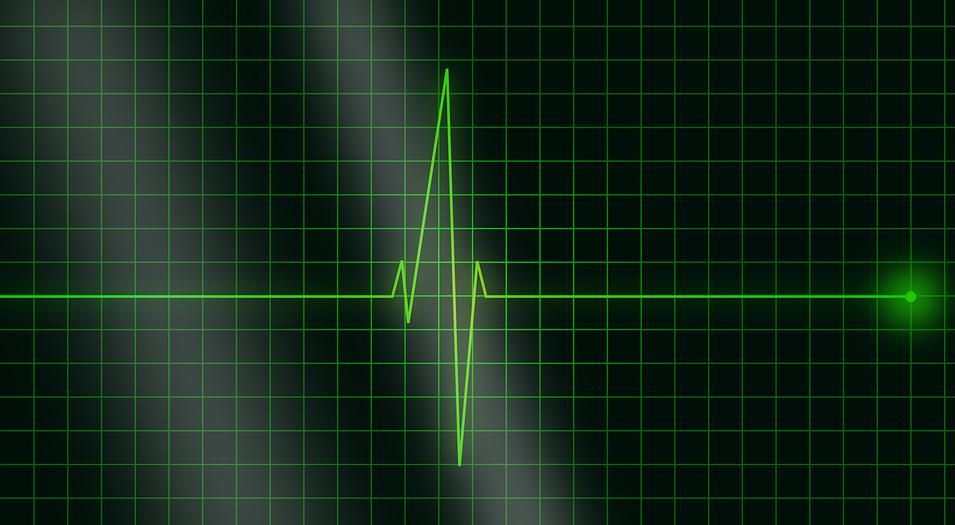 electrocardiogram-36732_960_720.png