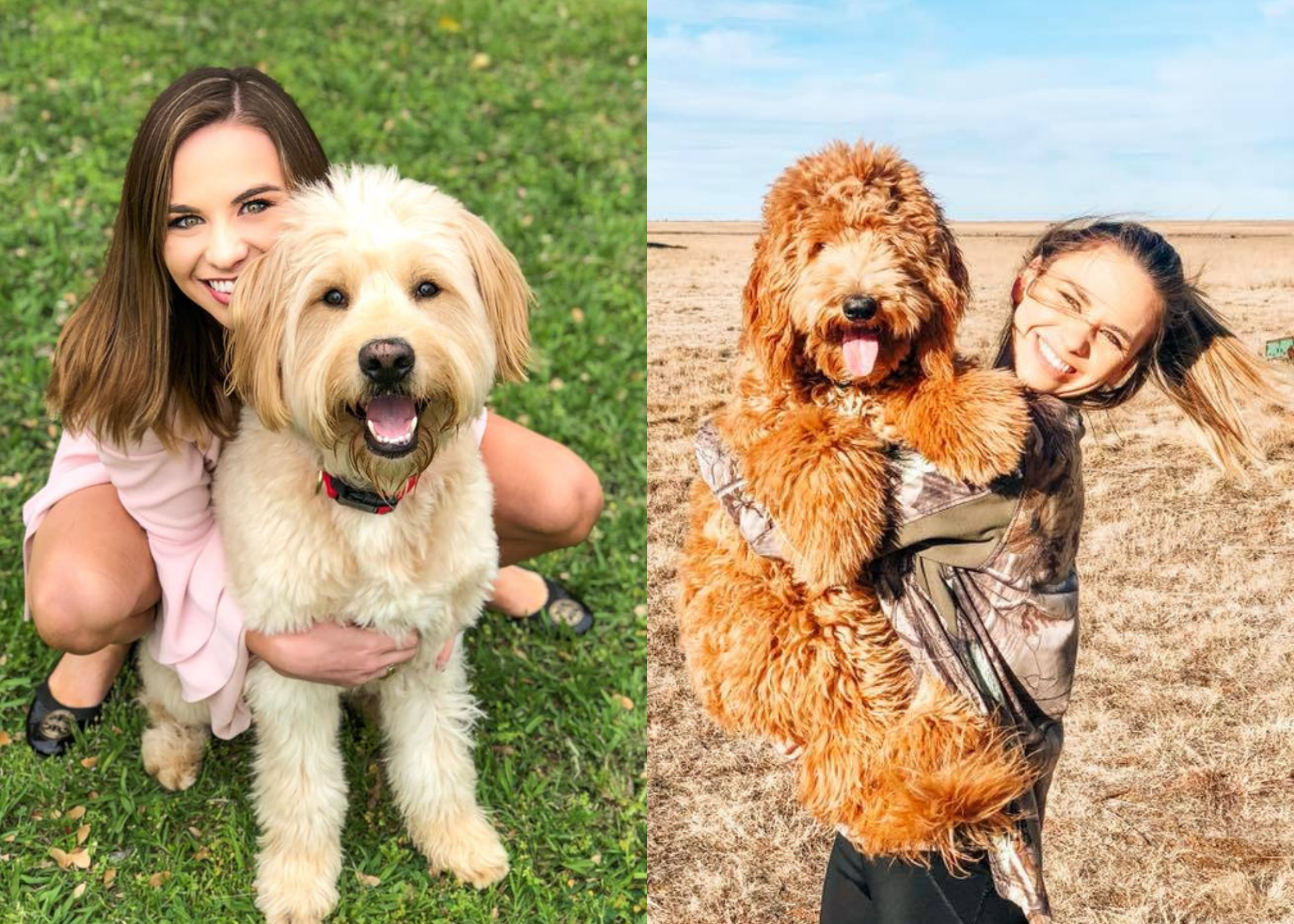MAPLE & MARLEY - Meet our wedding coordinator, Morgan's two golden-doodles, Maple & Marley. Maple likes long walks to Pet's Mart and anything that involves a treat. Marley will do just about anything to get you to throw her ball. All she thinks and dreams about is playing fetch.