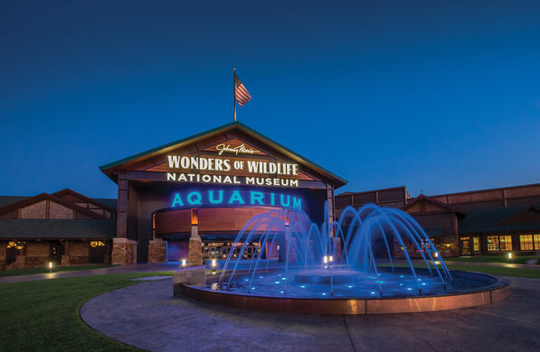WONDERS OF WILDLIFE AQUARIUM - SPRINGFIELD, MO   Johnny Morris' personal passion for conservation has positioned Wonders of Wildlife with an opportunity like no other attraction before it to have a positive national impact on wildlife and conservation. By partnering with leading conservation organizations, Johnny Morris will establish one of the most valuable and respected conservation and education. Wonders of Wildlife celebrates people who hunt, fish, and act as stewards of the land and water. In a world increasingly disconnected from the great outdoors, it's more important than ever for people of all ages.