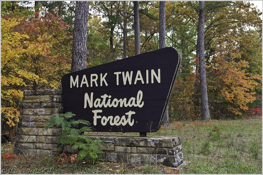 MARK TWAIN NATIONAL FOREST   Mark Twain National Forest is a U.S. National Forest located in the southern half of Missouri. MTNF was established on September 11, 1939. It is named for author Mark Twain, a Missouri native.
