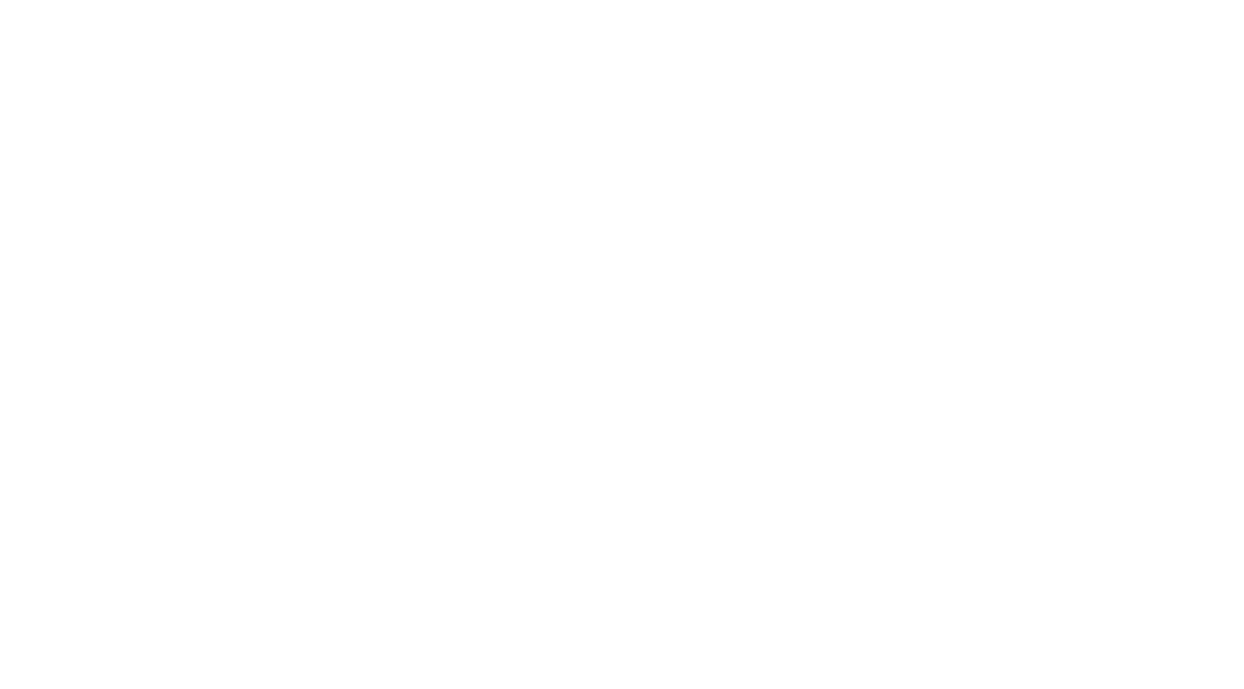 ChronicCellars_WHITE logo.png