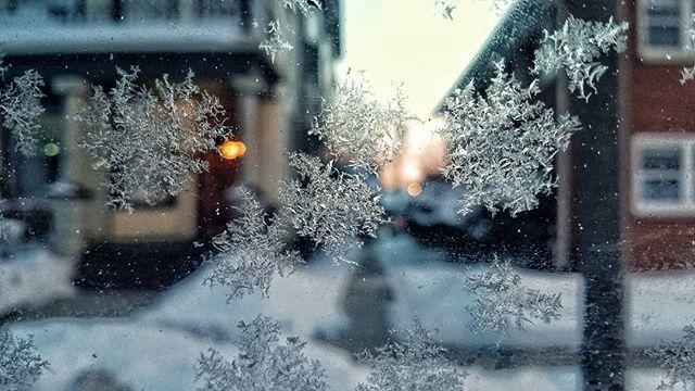 #cold #digitalphotograph
