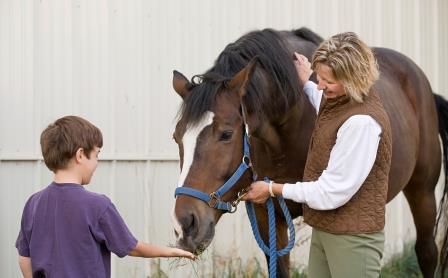 boy_feeding_horse.jpg