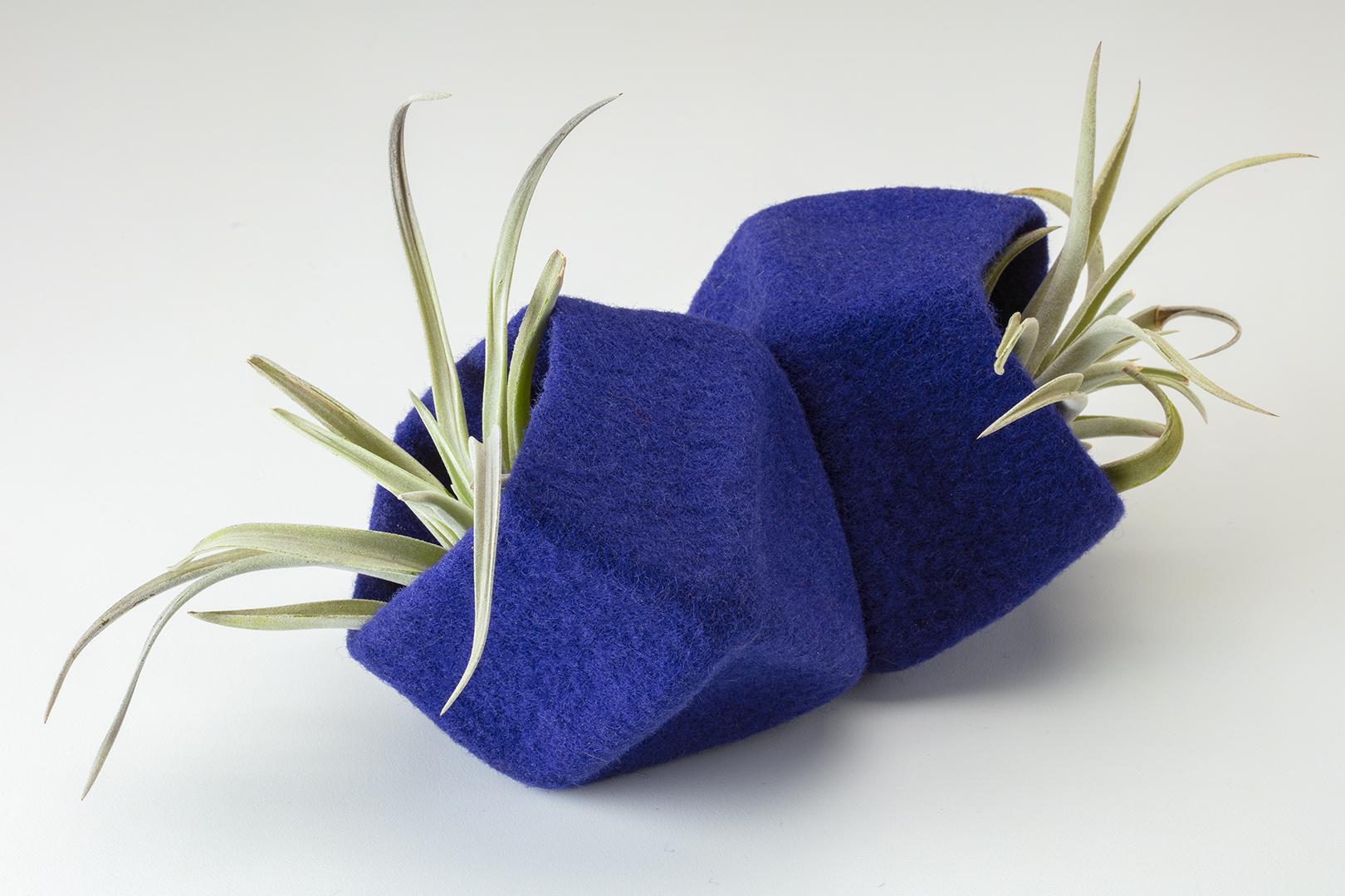 Cobalt Octohedrons