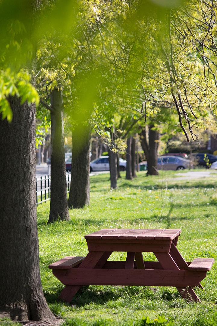 park-bench_stock03.jpg