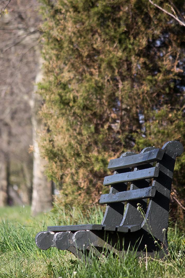 park-bench_stock01.jpg