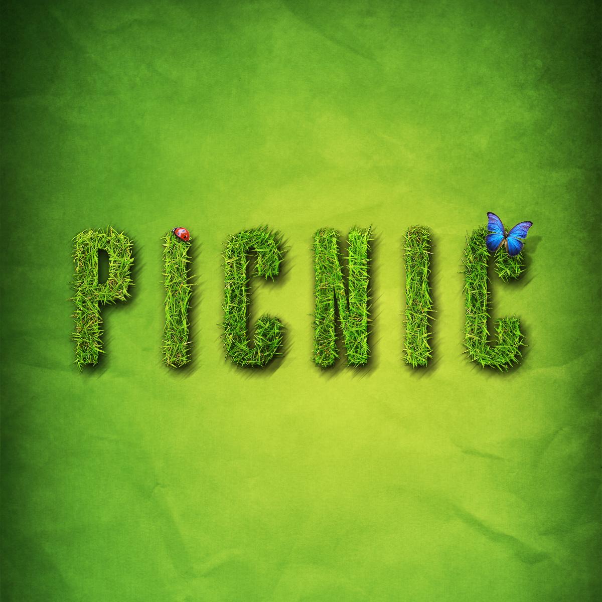 FCPC Picnic Outing
