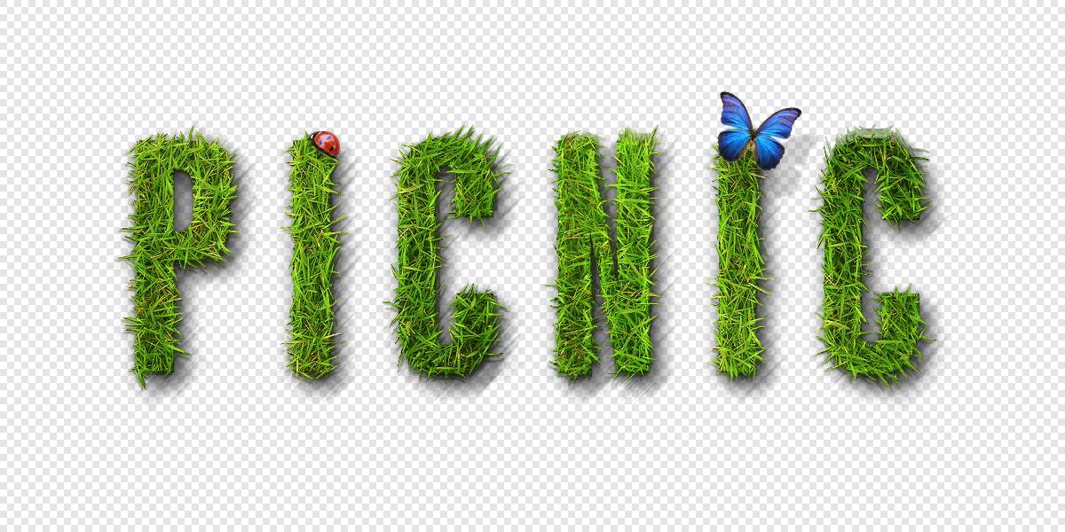 fcpc-picnic_asset04.jpg