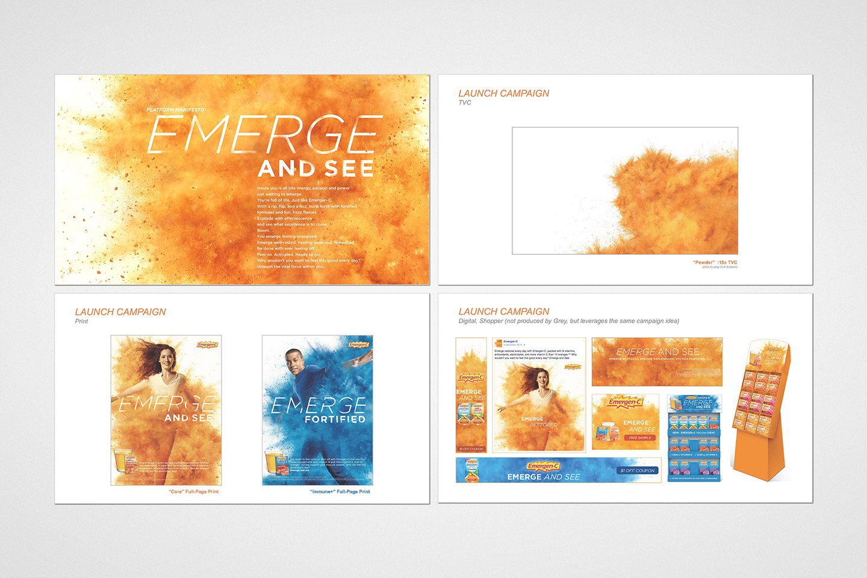 EMC-Campaign_Layout-1-sm.jpg