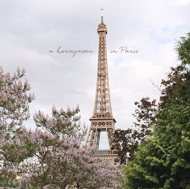 paris_honeymoon_title.jpg