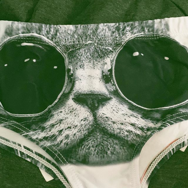 How awesome are these cat undies? 😂 . . . . . . #charts #top10 #musiccharts #radio #interview #radiostation #upcomingartist #singer #songwriter #single #music #musician #performer #performance #artist #song #sing #album #musicindustry #nashville #LA #USA #newartist #newmusic #release #piano #localartist #localmusic