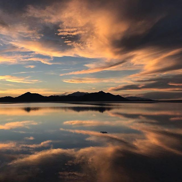 This is what the Bonneville Salt Flats look like this week – if you are in or near Utah, you can walk on the mirror. Photos from poet @thedaybooks, who has a new collection out from Veliz called _How to Know the Flowers_. (More on the history of Bonneville at the end of the magazine)