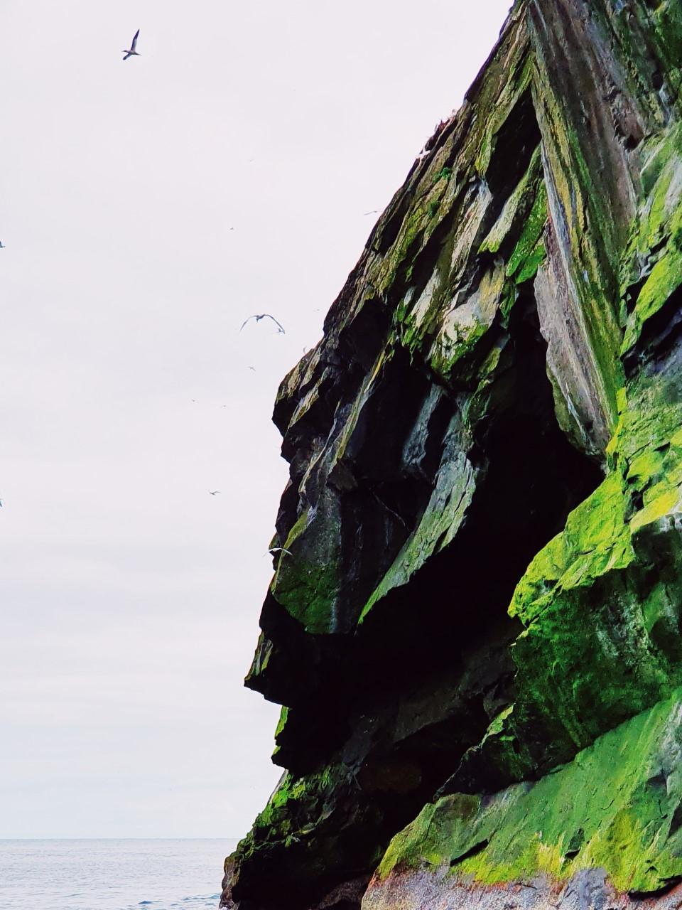ilda boreray cliffs.jpg