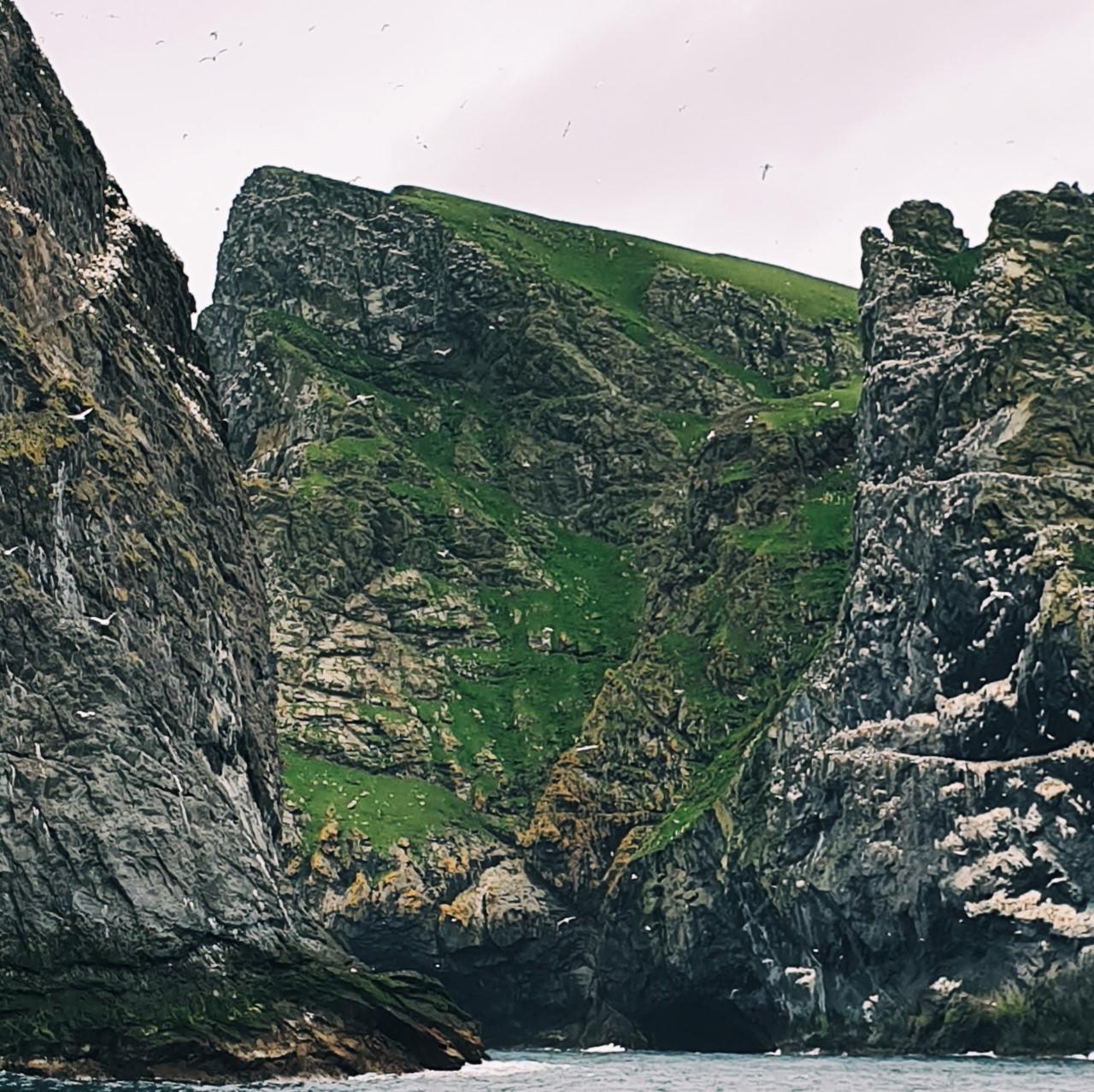 at kilda cliffs.jpg