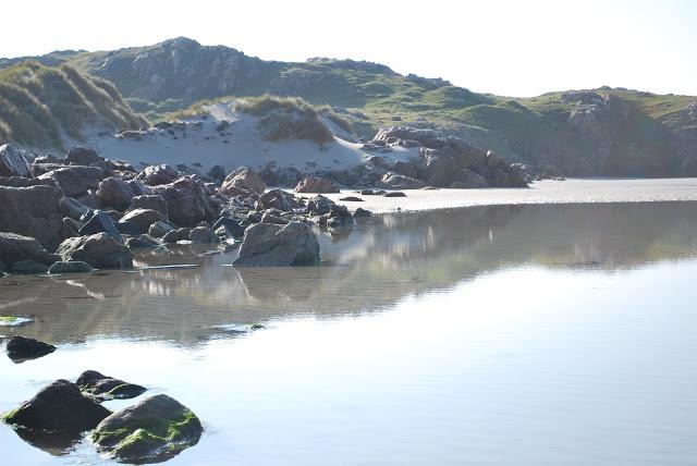summer reflection.JPG