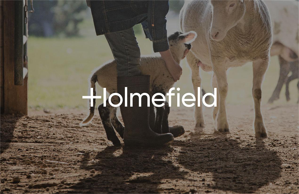 Holmefield