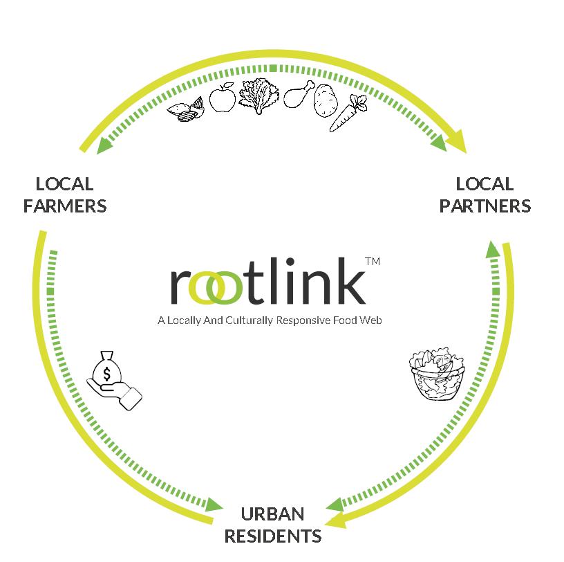 Rootlink.png
