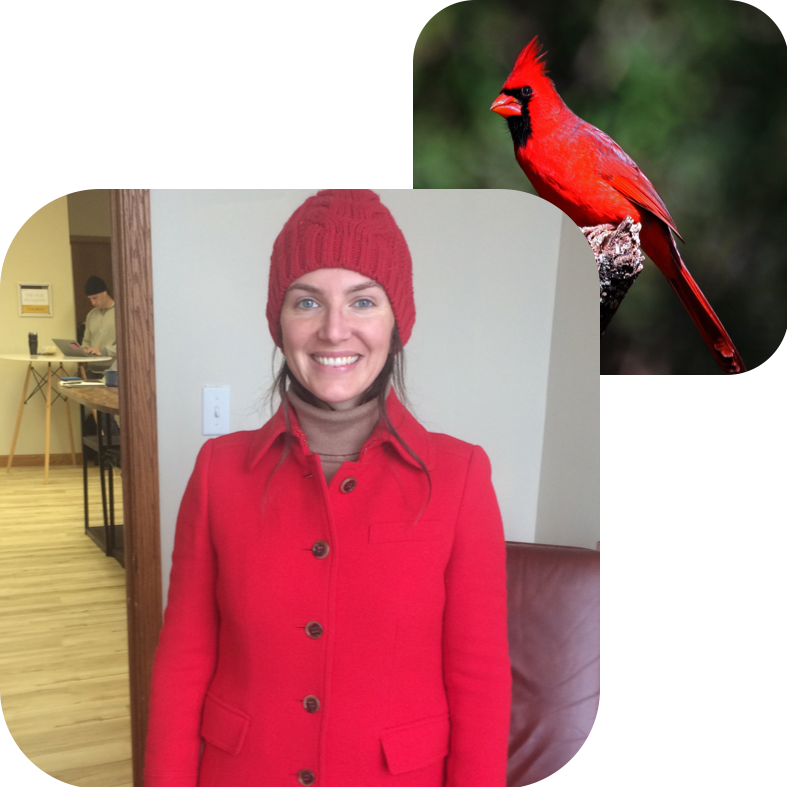 ELISE CRAFTS, ZONING & COMMUNICATIONS    Bird Twin:  Northern Cardinal   Why Commongrounds?  I love people, animal puns, and well-designed spaces. I'm eager to connect with the many birds who make this project possible.   About Elise:  Elise is the founder of  Statecraft  and co-director of  Commonplace , future tenant of Commongrounds.