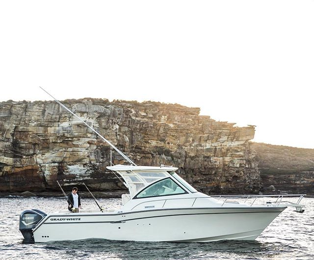 THE ultimate adventurer 🎣  Grady-White 330 Express