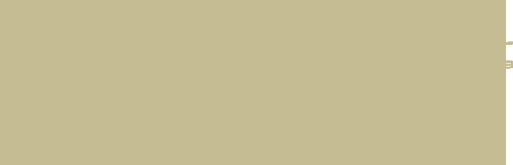 cabin-outline.png