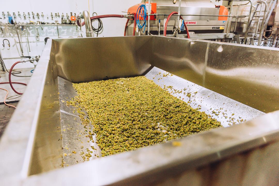 Olive Farm Wines Internet Sized-31.jpg