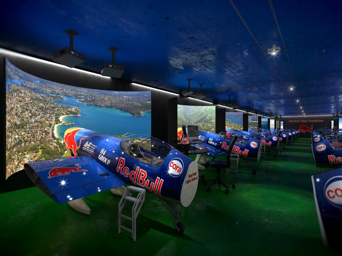 H4 Flight Sim CGI.jpg
