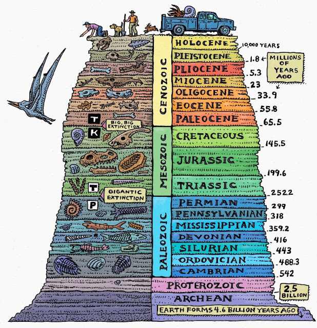 10 Interesting Facts about The geological time scale.jpg