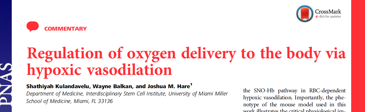 - NO is essential for blood flow and tissue oxygenation (again!)