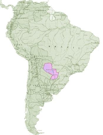 paraguay_map.jpg