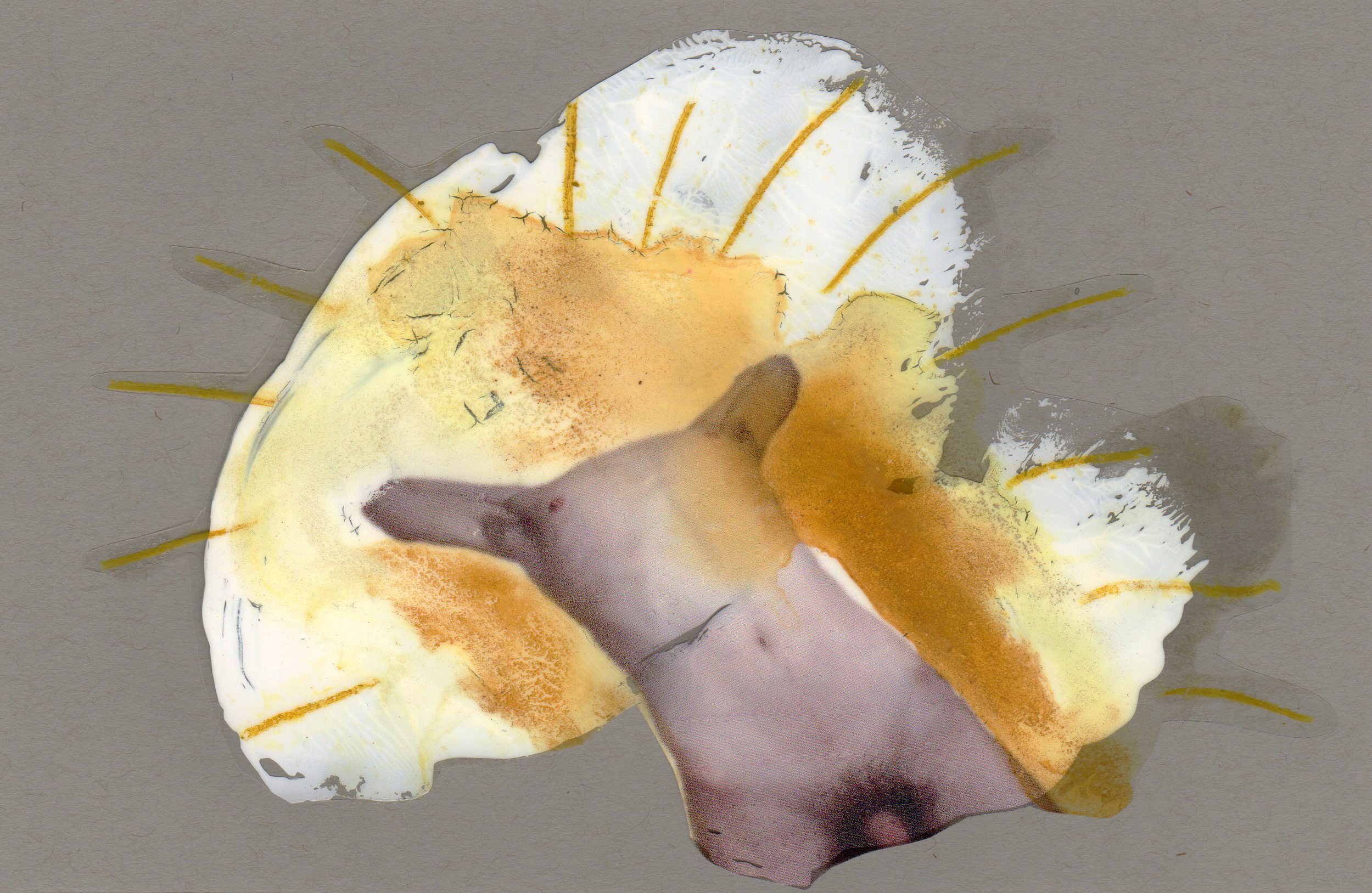 Ecstasy, 2014, paint transparency archival ink and paper, 8.5x5.5 inches