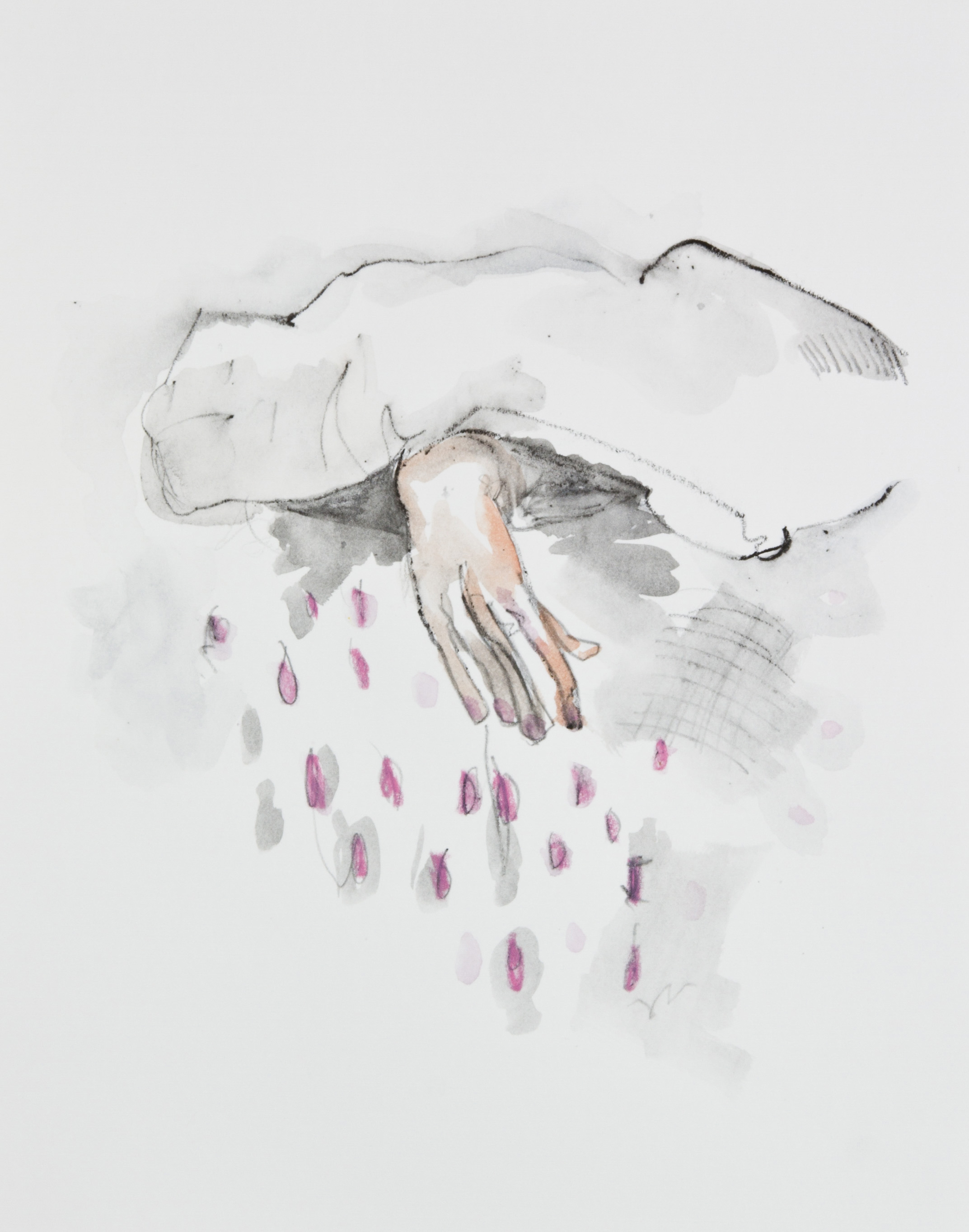Pink Rain, 2013, graphite, crayon and watercolor pencil on paper, 11x14 inches
