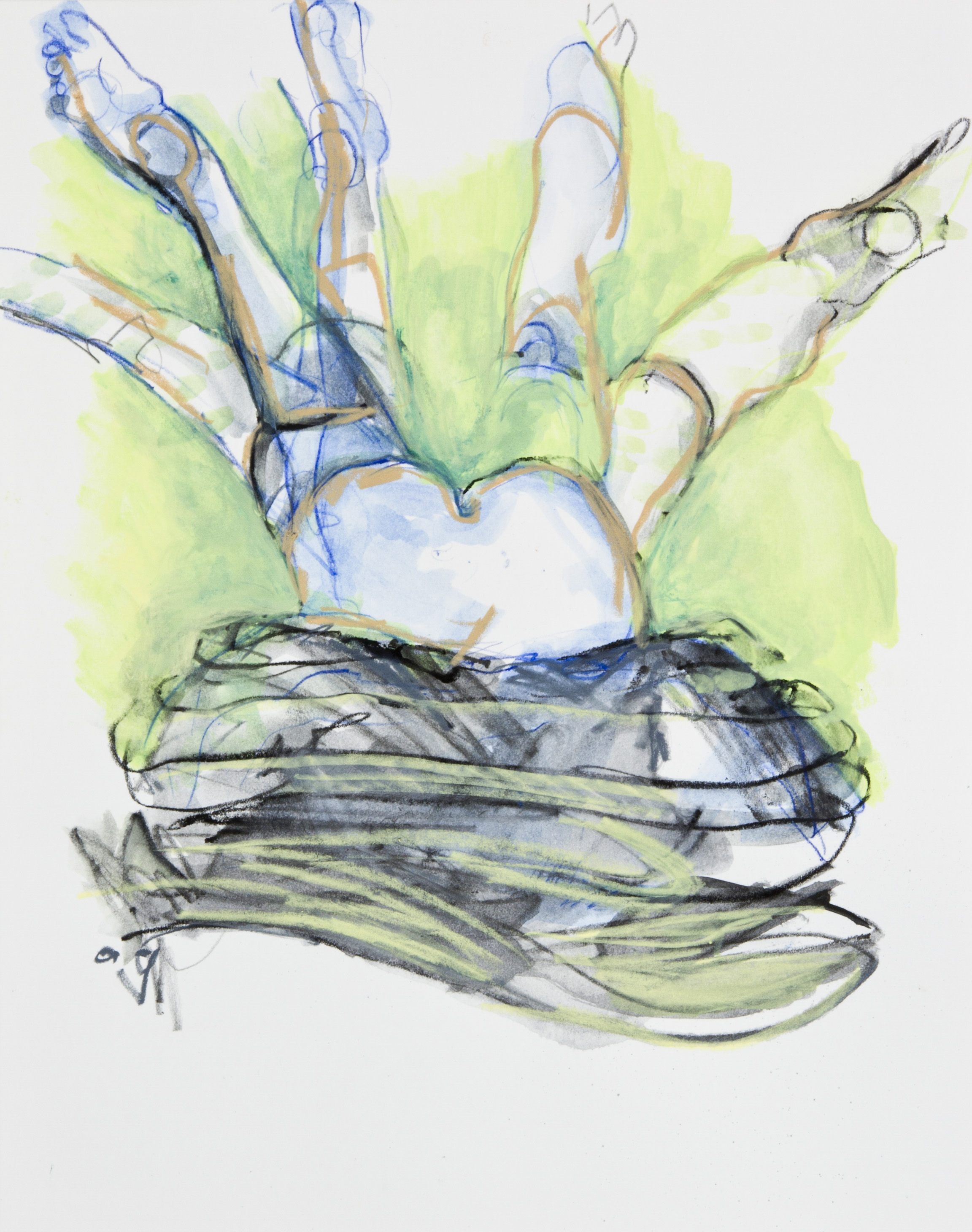 Wriggle Room, 2013, graphite, crayon and watercolor pencil on paper, 11x14 inches
