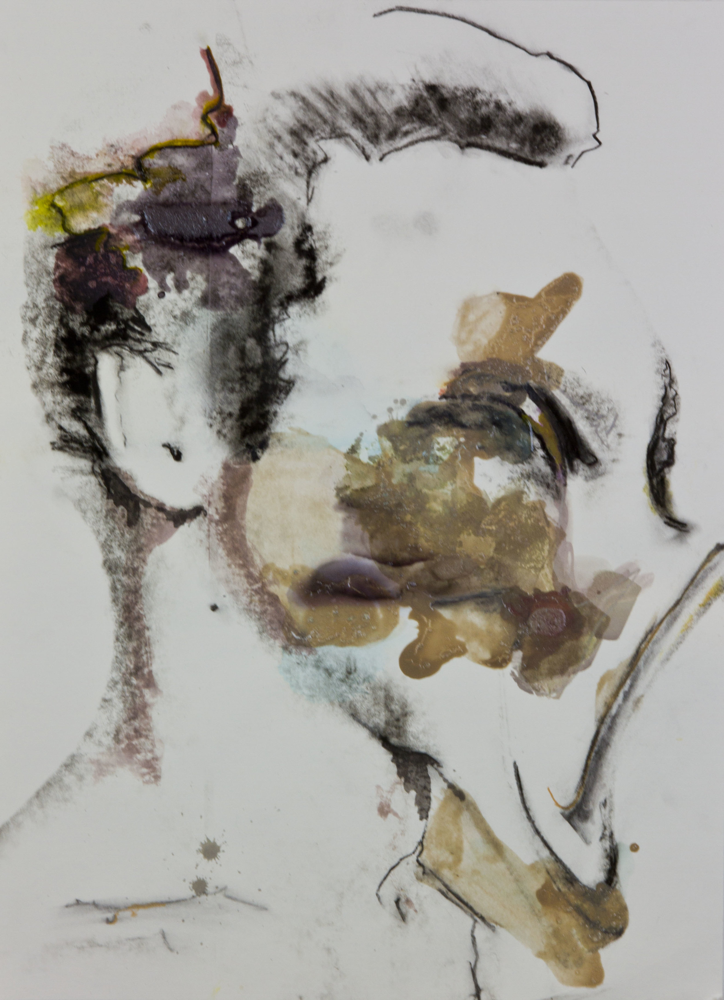 Mudslide Face, 2012, watercolor, acrylic and ink transfer on paper, 22x30 inches